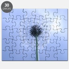 Making Wishes Puzzle