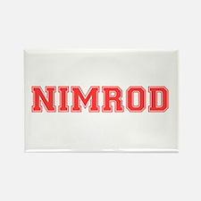 NIMROD Magnets