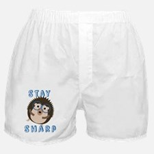 Cute Hedgie Boxer Shorts