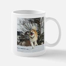 IcelandicSheepdog016 Mugs