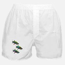 SCHOOL Boxer Shorts