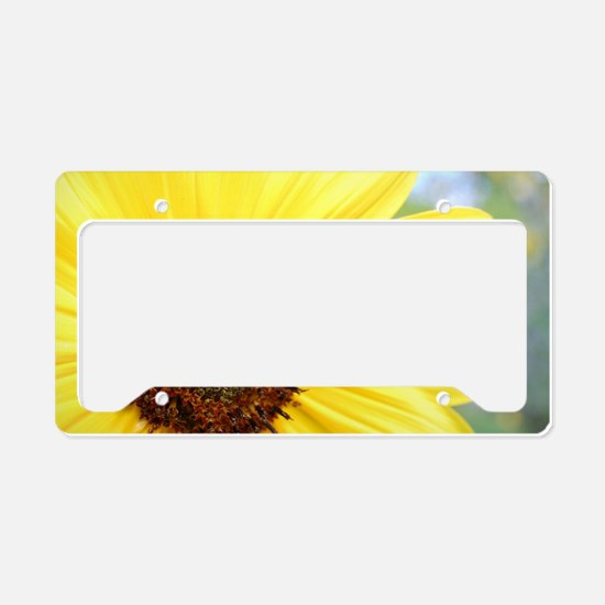 Funny Get well License Plate Holder