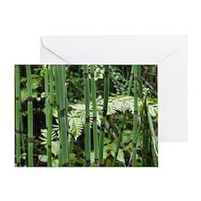 Horsetail Equisetum Greeting Card