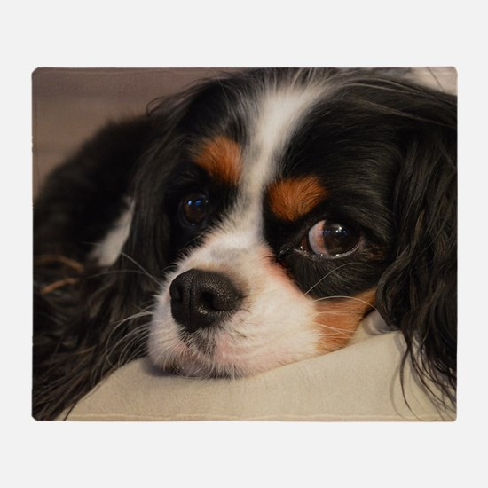 Cute Charles king cavalier Throw Blanket
