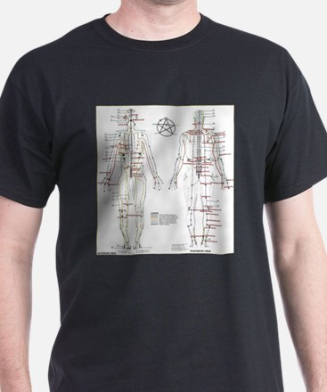 Chinese Meridians and Pressure poin T-Shirt