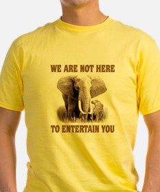 We Are Not Here Ash Grey T-Shirt
