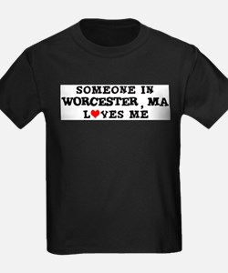 Someone in Worcester Ash Grey T-Shirt