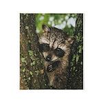 Baby Raccoon Throw Blanket