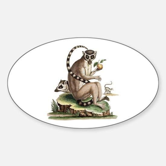 Lemur Artwork Decal