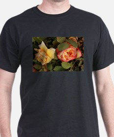 yellow and peach rose duo u pclose on bush T-Shirt