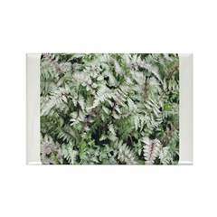 Fern for you Rectangle Magnet (10 pack)