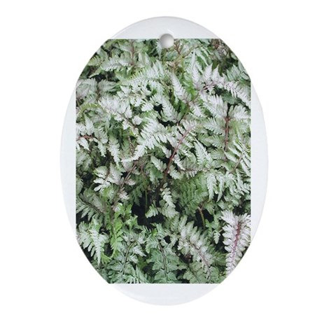 Fern for you Oval Ornament