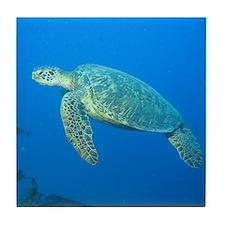 Sea Turtles Tile Coaster