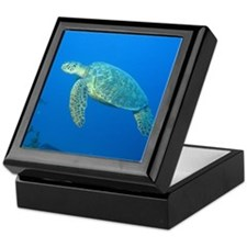 Sea Turtles Keepsake Box