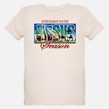 Jesus Is The Reason 4 Season T-Shirt