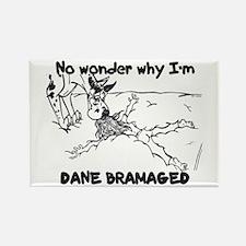 CH Dane Bramaged Rectangle Magnet