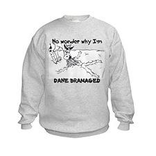 CH Dane Bramaged Sweatshirt