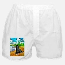 water Newf2 Boxer Shorts
