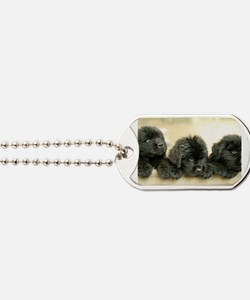 Cute Newfie Dog Tags
