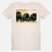 IMG_2696.JPG T-Shirt
