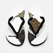 SPECIES Flip Flops