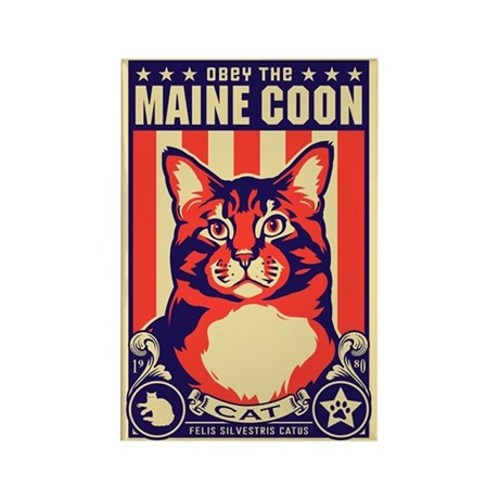 Obey the Maine Coon Cat! Magnets (10 pack)