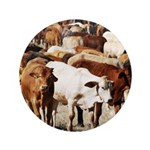 A Herd of Cattle Button