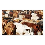 A Herd of Cattle Sticker (Rectangle 10 pk)