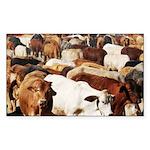 A Herd of Cattle Sticker (Rectangle 10 pk)