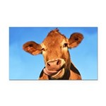 Selfie Cow Rectangle Car Magnet