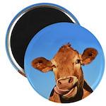 Selfie Cow Magnet