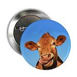 Selfie Cow 2.25