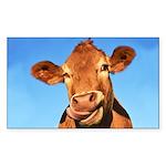 Selfie Cow Sticker (Rectangle 50 pk)