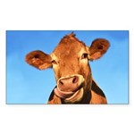 Selfie Cow Sticker (Rectangle)