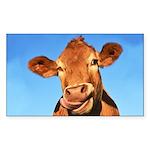 Selfie Cow Sticker (Rectangle)
