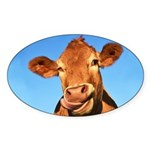 Selfie Cow Sticker (Oval)