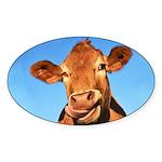 Selfie Cow Sticker (Oval)