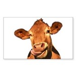 Selfie Cow (Transparent) Sticker (Rectangle 50 pk)