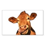 Selfie Cow (Transparent) Sticker (Rectangle)