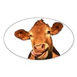 Selfie Cow (Transparent) Sticker (Oval)