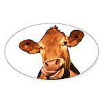 Selfie Cow (Transparent) Sticker (Oval 10 pk)