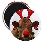 Christmas Cow 2.25