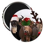 Santa & Friends 2.25