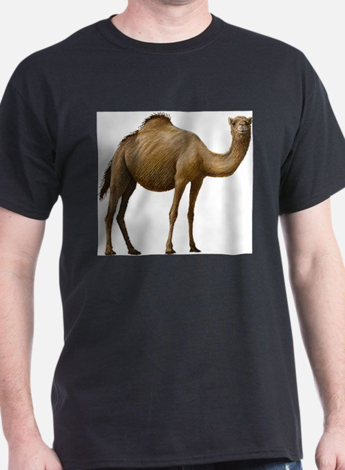 men 39 s camel t shirts camel tees shirts for men cafepress. Black Bedroom Furniture Sets. Home Design Ideas