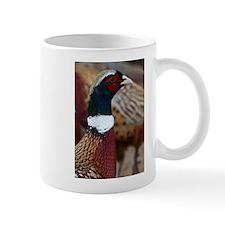 Ringtail Pheasant Mug
