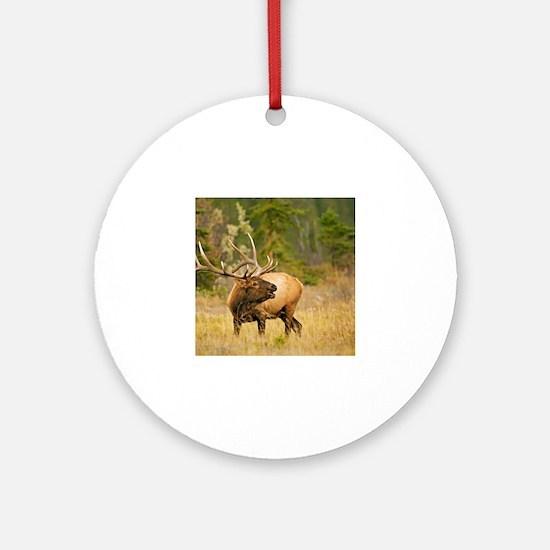 Wapiti Elk Bull2 Round Ornament