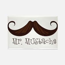 Mr. Mustache Magnets