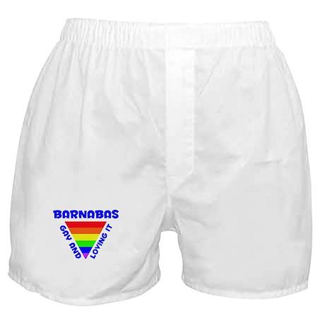 Barnabas Gay Pride (#005) Boxer Shorts