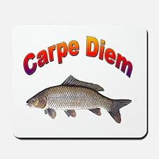 Carpe Diem Seize the Day Mousepad