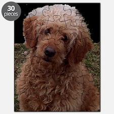 Cute Golden doodles Puzzle
